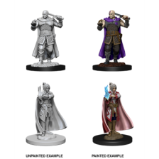 Minsc & Delina (PACK OF 6): D&D Nolzur's Marvelous Unpainted Miniatures (W8)