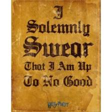 GBeye Mini Poster - Harry Potter I Solemnly Swear
