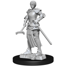 WizKids Deep Cuts Unpainted Miniatures - Towns People: Castle II